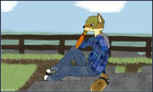 At The Beach .. by lonepaws