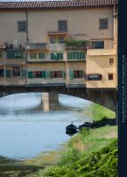 Ponte Vecchio Preview by kuschelirmel-stock