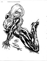 Black Cat by Renato Camilo by RussellJackson