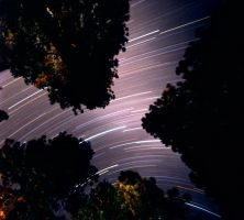 Yosemite Startrail 01 by Dilznacka