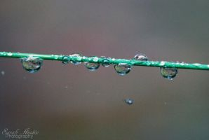 Droplets. by CapnSarah