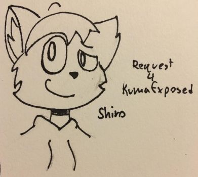 Shiro for KumaExposed by d00dlesInk
