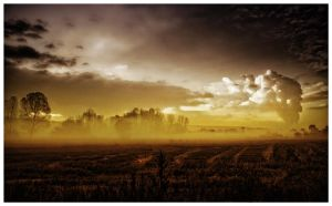 yellow fog by GDALLIS