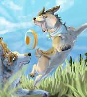 Frisbee For Dummies by kleslie