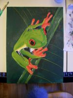 Red Eyed Tree Frog by Lisa99