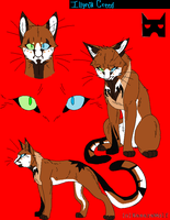 Warrior Cats CS Template by KasaraWolf by Obsessive7s