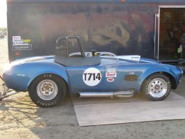 Shelby Cobra Drag Car by Jetster1