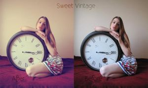Sweet Vintage Photoshop Level by addy-ack