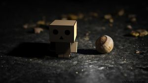 Danbo by FugyDesign