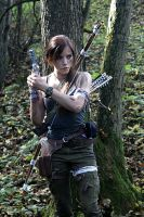 Lara Croft - TR 2013 - 03 by ImeldaCroft
