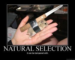 Natural Selection by Yohan-Gas-Mask