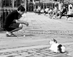 The Kid and a cat by Masisus
