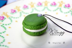 French Macaron by Wingg