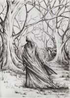 Nazgul by AnotherStranger-Me