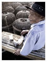 bird-cage seller by tolakangin