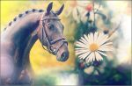 Horse vs Flower 4. by BiekeBloompje