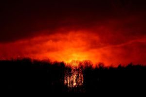 10 minutes ago burning wood by Dieffi