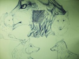 sketchpage 9 by CaledonCat