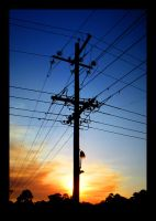 Sunset Powerlines 2 by kayne