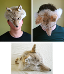 Light Coyote Mask (for sale) by wylieblais