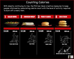 Calorie Count by Terraced-Fields