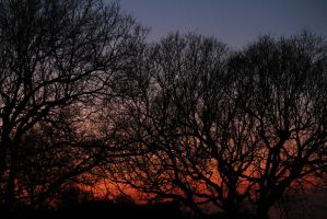 Tramonto 13/03/12 by Andriel-Wii
