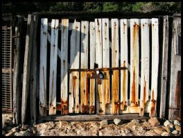 Rusted Old Gate by TSVN