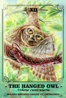 The Owl Tarot- XII HANGED OWL (Athene cunicularia) by Onislogo