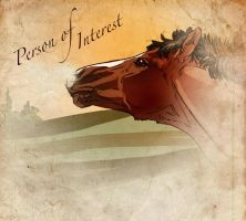 # 2287 Person of Interest by Templado