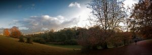 Westonbirt by SPEARdesign