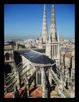 Bordeaux - Cathedral by Ubhejane