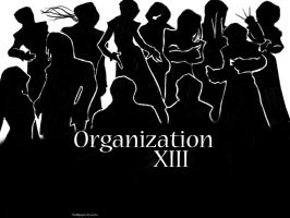 Organization XIII wallpaper by Zetra