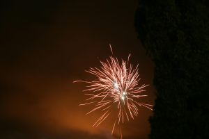 Happy New Year 20122013 2 by afoxen