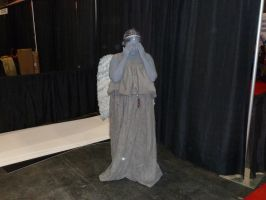 Weeping Angel by nx20