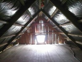 Shiny attic roof by Reinder