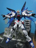 RG Freedom: Panel Washed and Decals Applied. by s0tangh0n