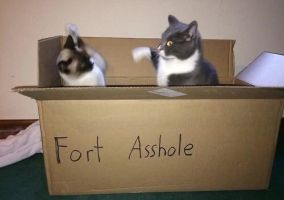 Fort Asshole by The--Mad--Russian