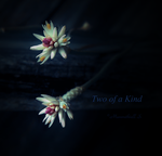 Two of a Kind by Manwathiell