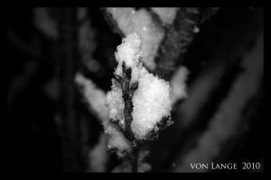 Winter in Germany III. by MRvLPhotography