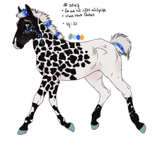 2047 Padro Foal Design for RougarCougar by ArtOfFreedom