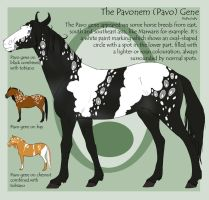 The Pavonem Gene by Okami-Haru