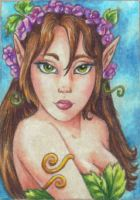 Wood Nymph Art Card by stephanielynn