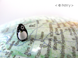 Around the world. by harry-the-penguin