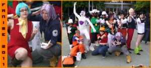 Fanime 2011 - DB Gathering by Rider4Z