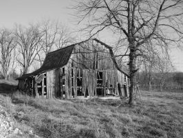 old barn by flangeez