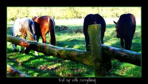 Fed up with everything by Kheila