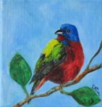 Painted Bunting by decomposerdoll
