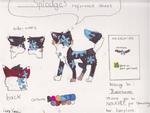 Reference Sheet of Splodge by bubblehooves