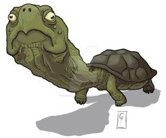 The Turtle by GaderelGuitarist