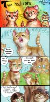 Two Red Cats - Strip 40 - Shut up, cat! by FuriarossaAndMimma